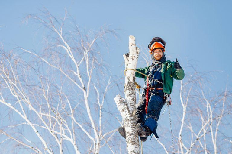 Gefährliche Arbeiten bedürfen besonderer Schutzmaßnahmen