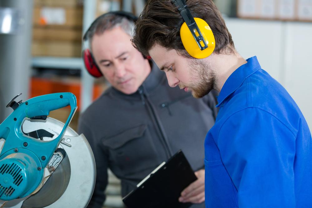 TRLV Lärm, LärmVibrationsArbSchV
