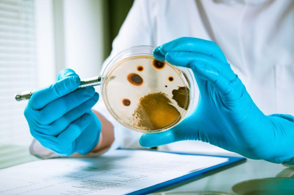 Biozide in Unternehmen: Wie die unerwünschte Wirkung verhindert wird