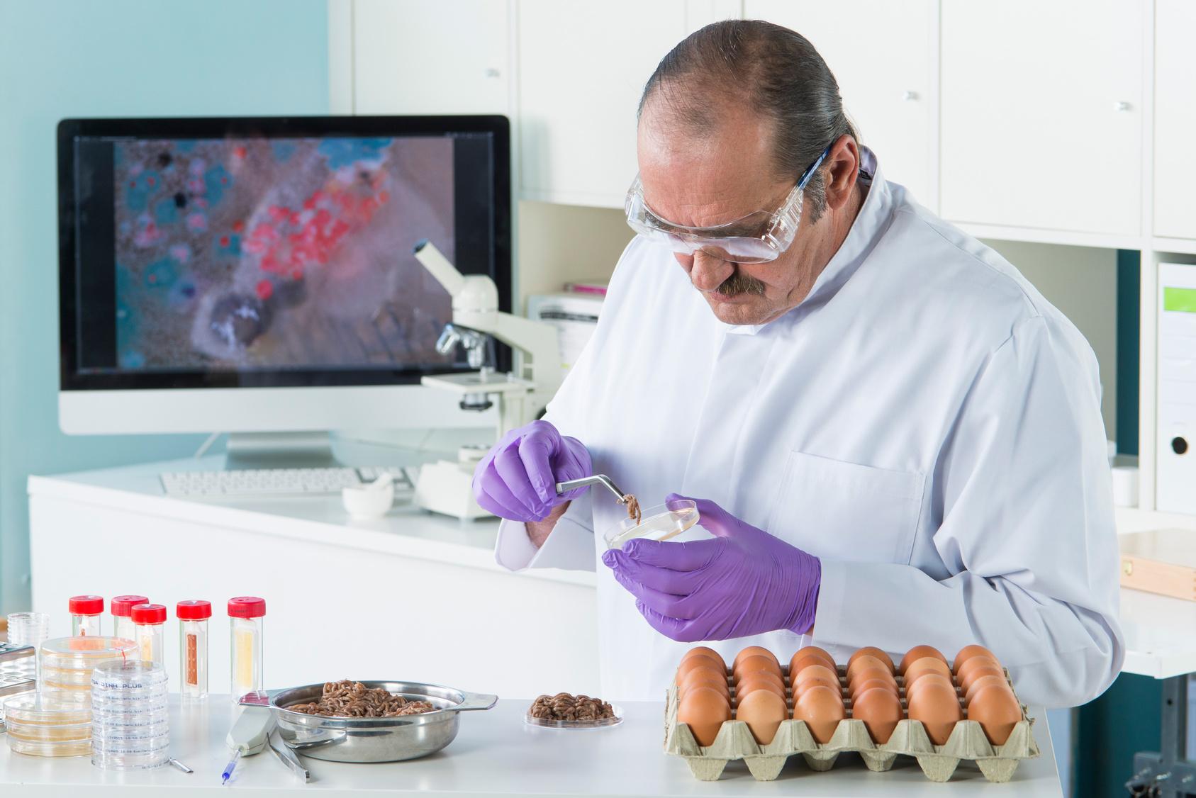 Die Infektionsschutzbelehrung: Ein Muss beim Umgang mit Lebensmitteln