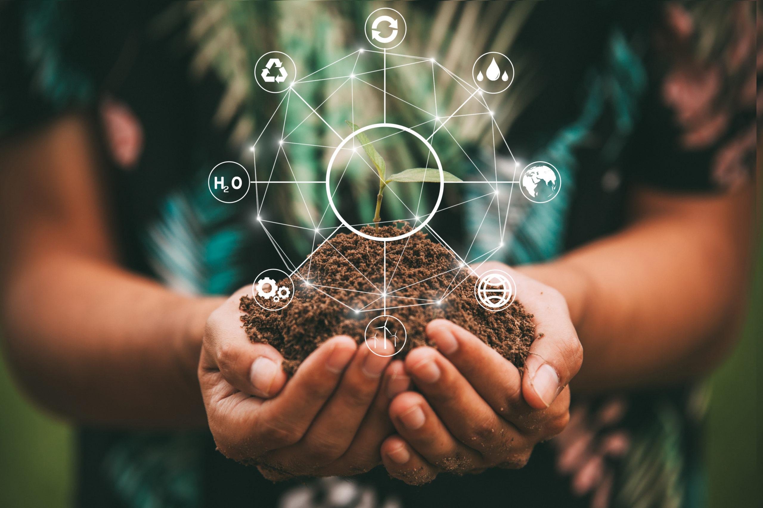 Umweltmanagement: Alle wichtigen Infos auf einen Blick