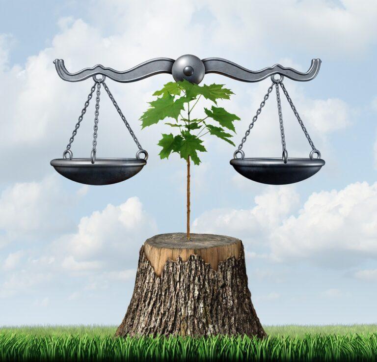 Umweltrecht: Überblick über die wichtigsten Gesetze